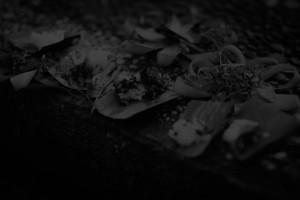 dark_offerings